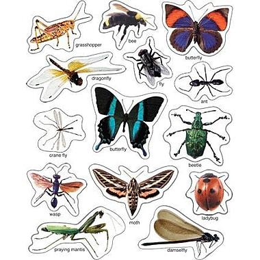 Carson Dellosa Publications Insects Photographic Window Cling
