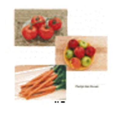 Stages Learning Materials Fruits and Vegetables Poster Set