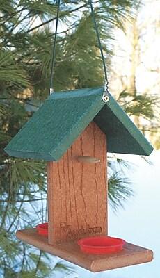 Audubon/Woodlink Go Green Oriole Tray Bird Feeder (WYF078277048280) photo