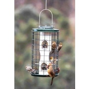 Audubon/Woodlink Avian Series Caged Tube Bird Feeder; 11''