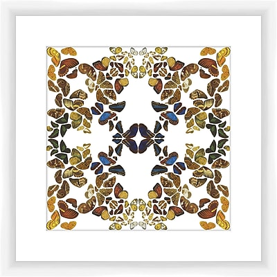 PTM Images Butterfly Kaleidoscope I Framed Graphic Art