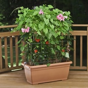 Marchioro Self-Watering Planter Box w/ Trellis