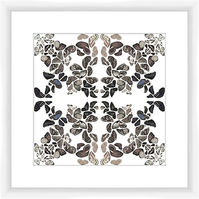 PTM Images Butterfly Kaleidoscope II Framed Graphic Art