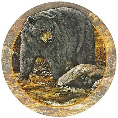 Thirstystone Bear Coaster (Set of 4)