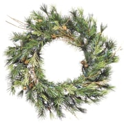 Vickerman Mixed Country Pine 20'' PVC Wreath