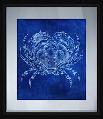 PTM Images Coastal Crab Framed Graphic Art