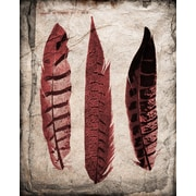 PTM Images Bird Feathers II Graphic Art Plaque