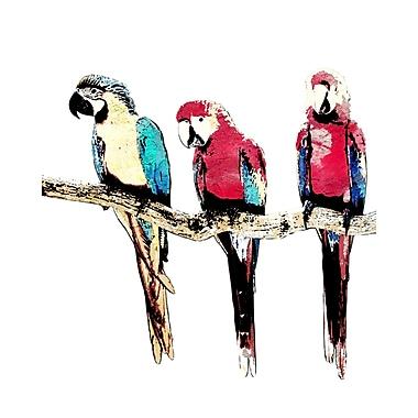 PTM Images Tropical Birds II Framed Graphic Art