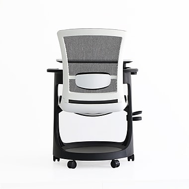 Eurotech Eduskate Fabric Conference Office Chair, Fixed Arms, Black (SKTRN-WHBLK)