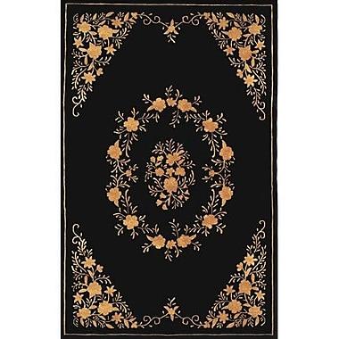 American Home Rug Co. Neo Nepa Aubusson Flowers Black Area Rug; Rectangle 5' x 8'