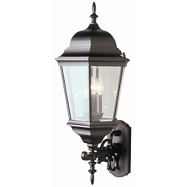 TransGlobe Lighting 3-Light Outdoor Sconce; Rust