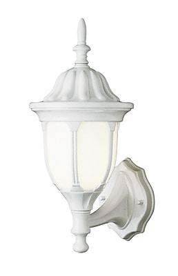 TransGlobe Lighting 1-Light Outdoor Sconce; White