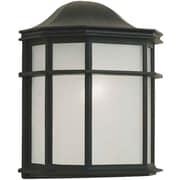 Forte Lighting 1-Light Outdoor Flush Mount; Black