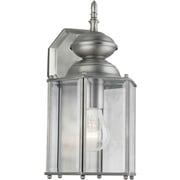 Forte Lighting 1-Light Outdoor Wall Lantern; Olde Nickel