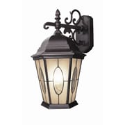Woodbridge Basic 1-Light Outdoor Wall Lantern; Vintage Rust