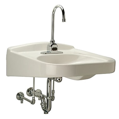 Zurn Ceramic 21'' Wall Mount Bathroom Sink w/ Overflow; 4'' Centers