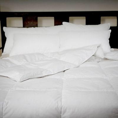 Allied Home All Season Down Comforter; Twin