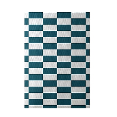 E By Design Plaid Teal Indoor/Outdoor Area Rug; 3' x 5'