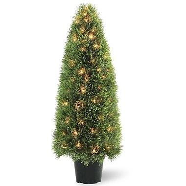 National Tree Co. Pre-Lit Upright Juniper Topiary in Pot; 48'' H x 17'' W x 17'' D
