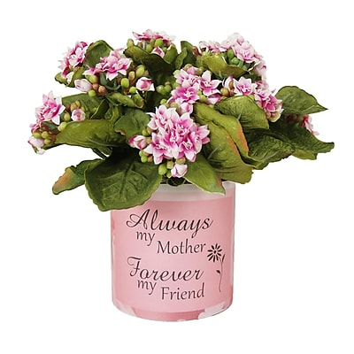 Creative Displays, Inc. Mother's Day Kalanchoe Bouquet