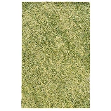 Pantone Universe Colorscape Geometric Hand-Tufted Green Area Rug; 3'6'' x 5'6''