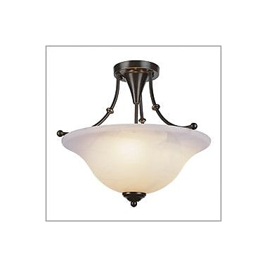 TransGlobe Lighting Outdoor Semi Flush Mount; Brushed Nickel