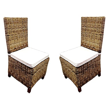 D-Art Collection Dining Patio Dining Chair w/ Cushion (Set of 2)
