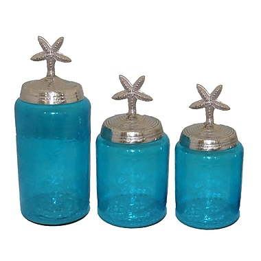 Entrada Glass 3 Piece Decorative Jar Set; Aqua