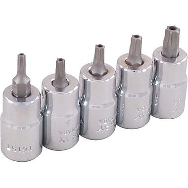 Gray ToolsMD – Jeu de tête de douilles Torx de 3/8 po, 6 pièces, inviolable, T7-T20