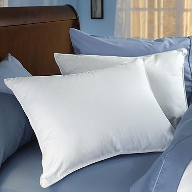 Spring Air Spring Air Double Comfort Fiber Pillow; 20'' x 28''