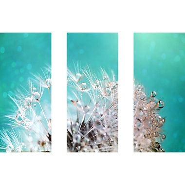 Marmont HIll 'Dandelion 2 Triptych' Painting Print on Wrapped Canvas; 30'' H x 45'' W