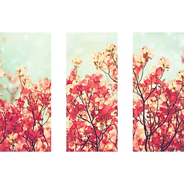 Marmont HIll 'Dogwood Triptych' Painting Print on Wrapped Canvas; 40'' H x 60'' W