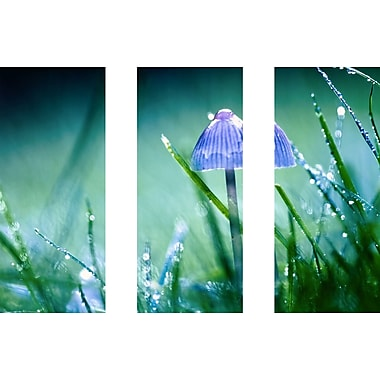 Marmont HIll 'Look For Me Triptych' Painting Print on Wrapped Canvas; 30'' H x 45'' W