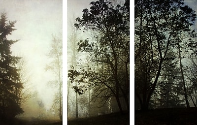 Marmont HIll 'Foggy Triptych' Painting Print on Wrapped Canvas; 40'' H x 60'' W