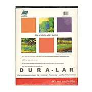 Grafix Dura-Lar Acetate Alternative Wet Media Pads 19 In. X 24 In. Pad Of 12