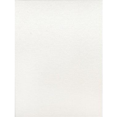 Fredrix Canvas Boards 8 in. x 10 in. each [Pack of 12]