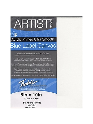Fredrix Blue Label Ultra-Smooth Portrait Grade Pre-Stretched Artist Canvas 8 in. x 10 in. each