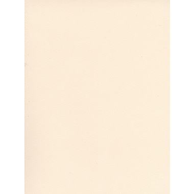 Canson Mi-Teintes Tinted Paper lily 19 in. x 25 in. [Pack of 10]