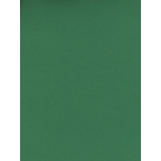 Canson Mi-Teintes Tinted Paper viridian 8.5 in. x 11 in. [Pack of 25]