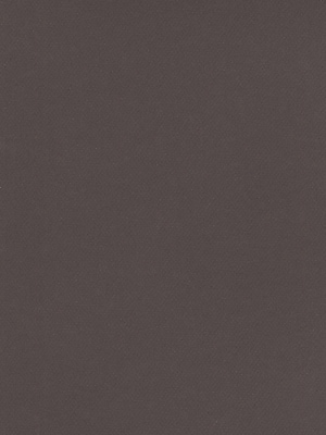 Canson Mi-Teintes Tinted Paper dark gray 19 in. x 25 in. [Pack of 10]