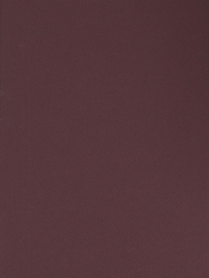 Canson Mi-Teintes Tinted Paper burgundy 19 in. x 25 in. [Pack of 10]
