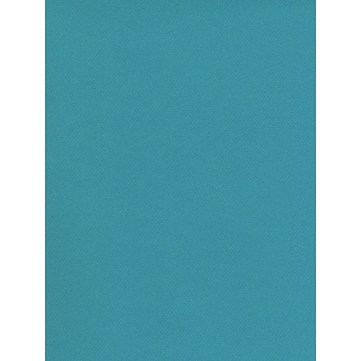 Canson Mi-Teintes Tinted Paper southern seas 19 in. x 25 in. [Pack of 10]