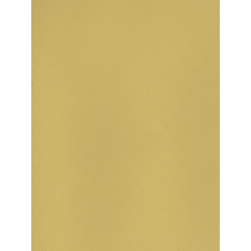 Canson Mi-Teintes Tinted Paper anise 19 in. x 25 in. [Pack of 10]