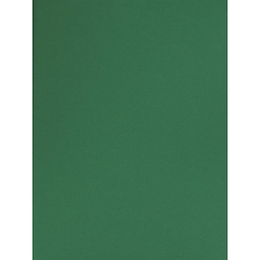 Canson Mi-Teintes Tinted Paper viridian 19 in. x 25 in. [Pack of 10]