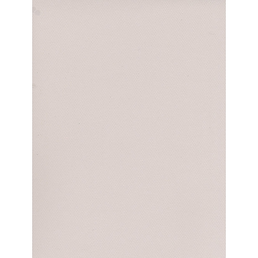 Canson Mi-Teintes Tinted Paper pearl grey 19 in. x 25 in. [Pack of 10]