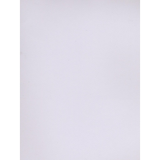 Canson Mi-Teintes Tinted Paper lilac 19 in. x 25 in. [Pack of 10]