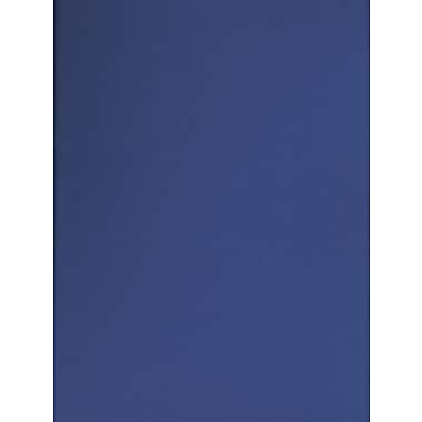 Canson Mi-Teintes Tinted Paper royal blue 19 in. x 25 in. [Pack of 10]