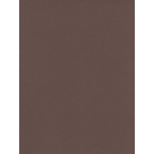 Canson Mi-Teintes Tinted Paper sepia 19 in. x 25 in. [Pack of 10]