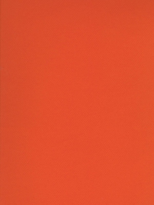 Canson Mi-Teintes Tinted Paper orange 19 in. x 25 in. [Pack of 10]