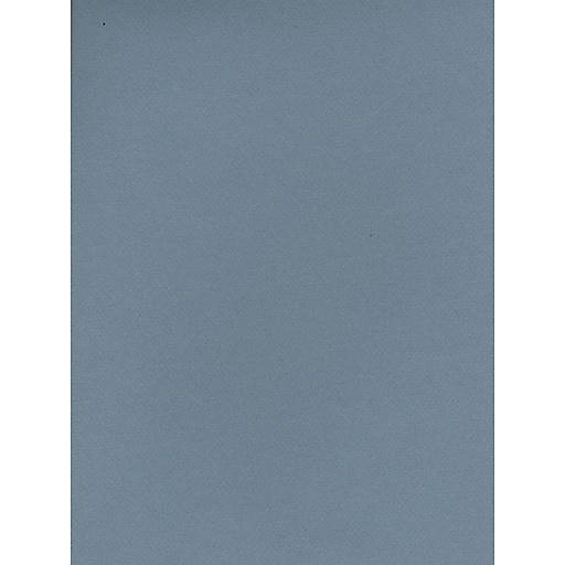 Canson Mi-Teintes Tinted Paper light blue 8.5 in. x 11 in. [Pack of 25]